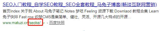SEO站内优化:网站URL设计及伪静态处理(十三)